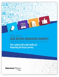 2013 B2B Buyer Survey Cover
