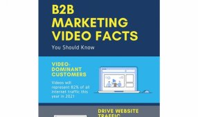 B2B Marketing Video Facts You Should Know