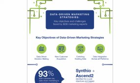 Data-Driven Marketing Strategies: Key Objectives & Challenges Faced By B2B Marketing Experts